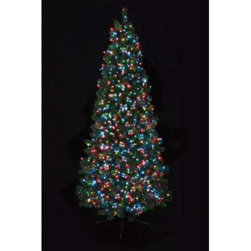 Premier Outdoor Christmas Lights