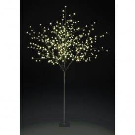 2.1m Osaka Cherry Tree with Warm White LED